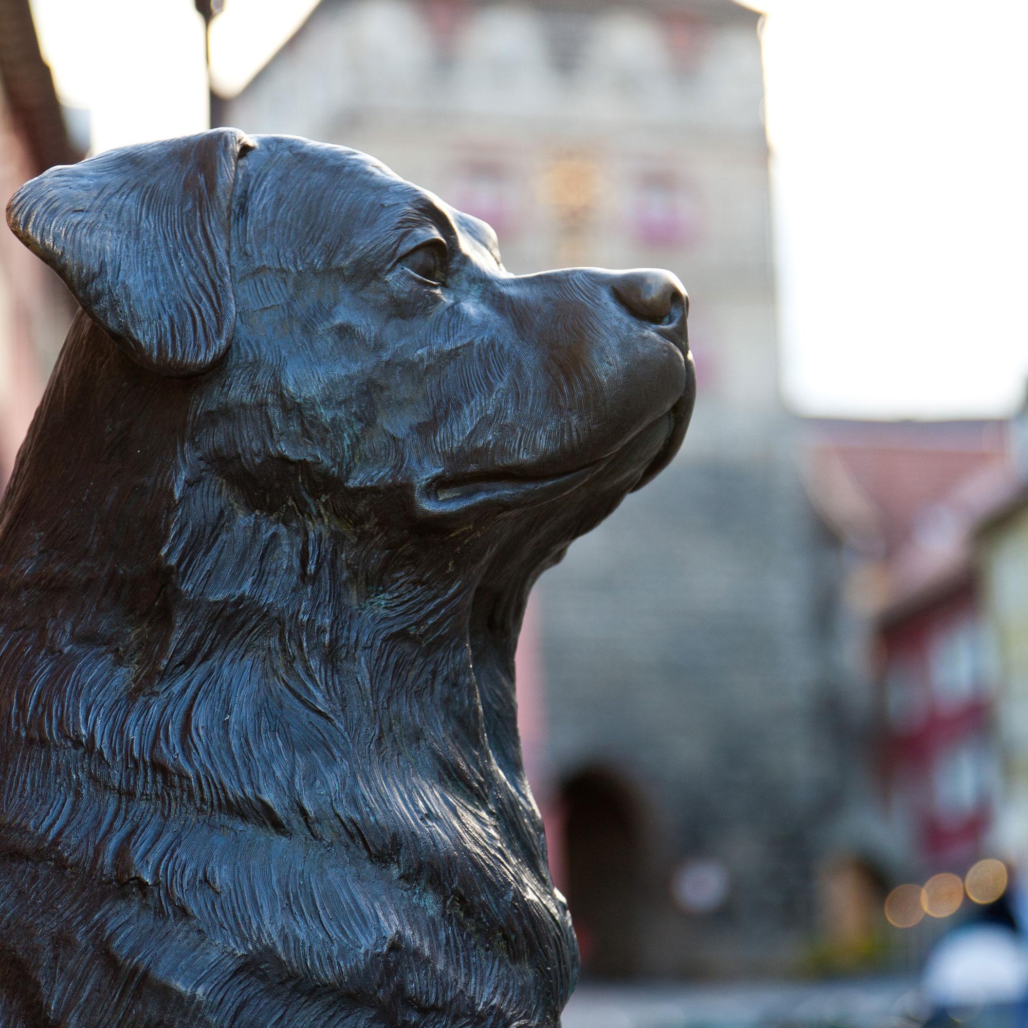 Die Rottweilerstatue von Ottmar Hörl